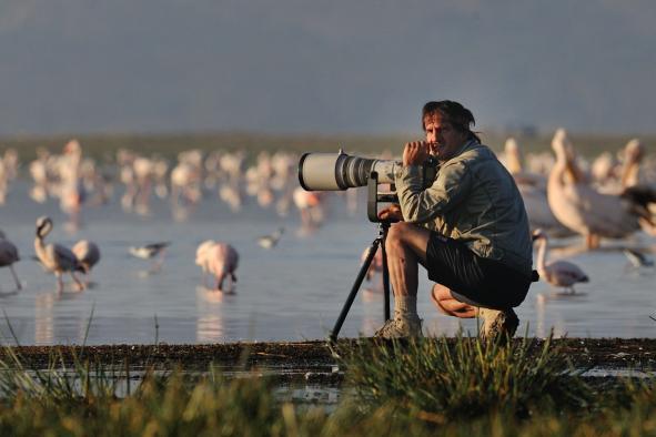 photographie-animaliere-les-10-commandements-19