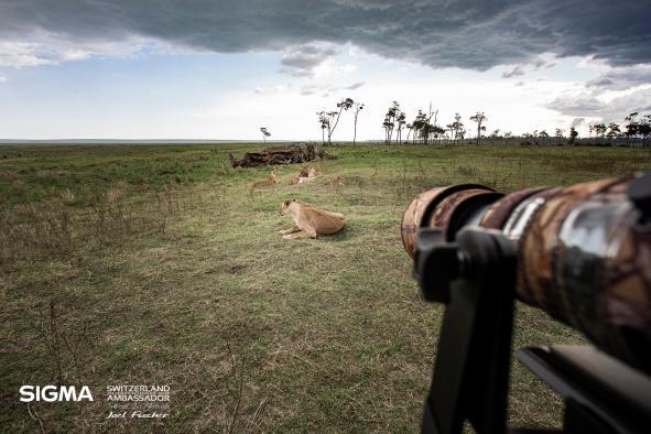 un-photographe-a-masai-mara-38